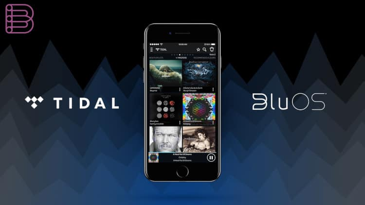 Tidal Masters on mobile phone | best of high end