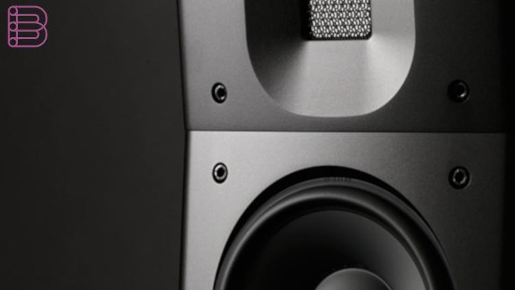 raidho-D-1.1-loudspeakers-2