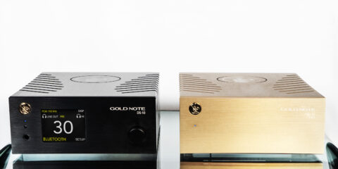 goldnote-ds10-plus-psu10-evo